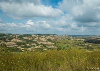 Theodore Roosevelt National Park ~ ND
